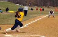 Hawks softball off to blazing start